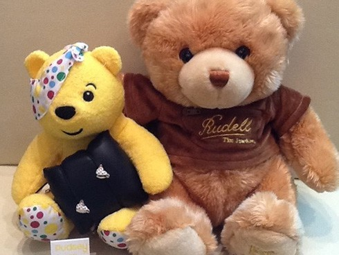 Pudsey Comes to Rudells